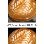 iOS-WebP for iOS – Cocoa Controls